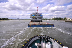 Veia Mate Offshore DSC_3793 (larry_antwerp) Tags: fabricom engiefabricom cofelyfabricom veiamate offshore windfarm windpower port        belgium belgi          schip ship vessel        schelde        multratug26 9667863 multratug saarens paula ponton barge