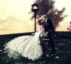 my love (ire_oli) Tags: wedding fl flowers love kisses mylove secondlife vintage