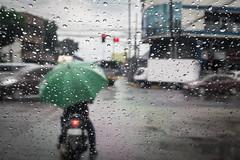 Motorised umbrella (carlosromonbanogon) Tags: 2016 cebu philippines motor umbrella green street light drop water rain fujifilm xt1 asia pinoy cloud trafic people motorcycle cycle window stop car travel southeast