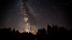 Milky Way (Rohit KC Photography) Tags: night sky photography milky way space dark trees stars edited enhanced lightroom canon5dmarkii wide angel sigma lens russian river ca california outdoor nature natural black background tripod long exposure le 30 seconds f28 iso1600