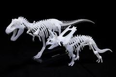 IMG_6878 (Barman76) Tags: bonelab trex tyrannosaur skeleton plastic laser cut