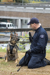 Burnaby RCMP Police Dog Services Demo (Zorro1968) Tags: burnaby rcmp policedogservices demo publicsafety event eventphotography eventphotographer openhouse 2016