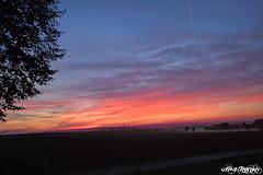 Sunrise (creepywhiterabbit) Tags: sunrise colours nature sun red shadows fog morning germany thuringia thringen deutschland a71 erfurter becken nikon d5300 sigma 1020