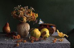 Last Autumn Dream (panga_ua) Tags: autumn light stilllife art fall fruits stone composition canon october ceramics pears artistic availablelight small gray grain ukraine explore fantasy grapes granite vase bouquet pure tones arrangement tabletop gentle quince mapleleaves bodegon fallenleaves subtle naturemorte artisticphotography naturamorta artphotography quinces bluebutterfly woodenbox sharpfocus explored spiritualsymbols stonetabletop nataliepanga rosesfrommapleleaves lastautumndream