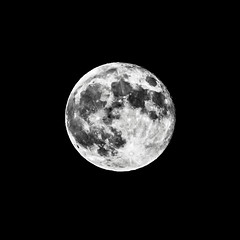 O, another Moon! (Woodacus) Tags: blackandwhite bw moon white black monochrome contrast square mono bright o fullmoon crop letter desaturated alphabet lunar canoneos5dmarkii ef70200mmf4lisusm14x silverefexpro2