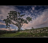 La Carrasca (Vicent Quiles) Tags: sky alicante cielo nocturna montaña afb alacant bocairent fvac afbocairent masdegalbis vicentquiles viquimi goldenawardlostcontperdidos kurtpeiserexcellence naixementdelriuvinalopó