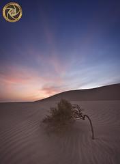 Sunset (RASHID ALKUBAISI) Tags: new nikon khalifa nikkor rashid راشد بوخليفة خليفة بوخليفه العديد nikond4 alkubaisi nikond3 الكبيسي nikond800 ralkubaisi nikond3s wwwrashidalkubaisicom nnano wwwrashidalkubaisi