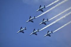 _DSC4878 (@bat1911) Tags: t4 blueimpulse jasdf iruma japanairselfdefenseforce   irumaairbase