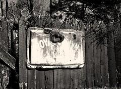 in Rabun County (LauraSorrells) Tags: winter monochrome sign vintage vines rust december clayton 2009 rabuncounty funkiness
