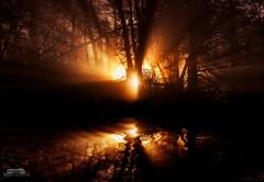 Golden rays (bgspix) Tags: chile wood light sunset reflection nature forest canon landscape volcano golden reflect rays sunrays villarrica ef24105mmf4lisusm eos550d bgspix