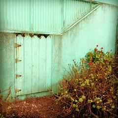 Green Gate 01