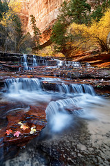 Archangel Falls (posthumus_cake (www.pinnaclephotography.net)) Tags: november autumn usa southwest fall nature water zeiss subway landscape utah waterfall nationalpark ut stream fallcolor scenic zion zionnationalpark ze distagon thesubway carlzeiss leftfork distagont2821 archangelfalls carlzeissdistagont2821ze