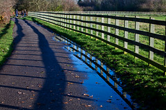 The Fence (juliereynoldsphotography) Tags: fence reflections shadows wiggisland juliereynolds