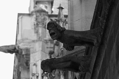 Gargoyle (Morgause666) Tags: blackandwhite bw paris france church frankreich europa europe ledefrance eu bn gargoyle chiesa francia glise medievale europeanunion gargouille biancoenero parigi gotico glisesaintmerri architetturagotica gargolla architetturamedievale