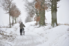 Rowerzysta (daamiank) Tags: road winter snow bike landscape nikon poland pepole d90