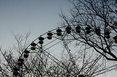 (thesecretpolaroid) Tags: park blue trees sky film wheel silhouette 35mm woods nikon asia skies shadows ride kodak places ferriswheel enchantedkingdom hue nikondigital bluehue kodakportra800 allaboutasia kodakportra 18g thisisasia nikond7000 vscopreset placesinasia