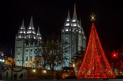 Christmas Lights at Temple Square (AnitaBurke1) Tags: night temple nikon nightlights christmastree christmaslights templesquare lds 2012 mormons mormontemple thechurchofjesuschristoflatterdaysaints saltlakecityut saltlakecitytemple d5100 anitaburke