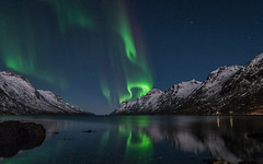 Aurora borealis, from Ersfjorden in Troms (Per Ivar Somby) Tags: auroraborealis troms nordlys kvalya northernlight northernnorway arcticlight ersjorden