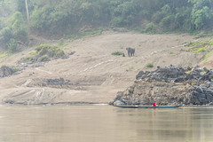 _RJS8178 (rjsnyc2) Tags: richardsilver richardsilverphoto richardsilverphotography nikon nikond810 d810 laos intrepidtravel asia mekong river mekongriver water travel travelphotographer travelphotography