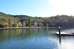 0037 Ku-Ring-Gai National Park.jpg (Tom Bruen1) Tags: 2014 kuringgaichasenationalpark scenery