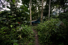 Guilherme.Gnipper-0169 (guilherme gnipper) Tags: picodaneblina yaripo yanomami expedio expedition cume montanha mountain wild rainforest amazonas amazonia amazon brazil indigenous indigena people