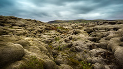 Icelandic lava fields. (Luke Sergent) Tags: barren beautiful covering dramatic field geological geology green iceland icelandic kirkjubaejarklaustur kirkjubaerjarklaustur laki landscape lava moss mossy natural nature outdoor outdoors overcast rock rough scenery scenic terrain unique view volcanic volcano wild wilderness