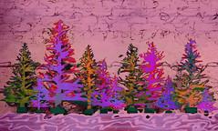 11 Potted Pines ;-) (bethrosengard) Tags: bethrosengard photomanipulation digitallyenhanced photoart digitalmagic digitalart