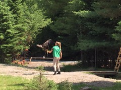 Parc Omega in Quebec, Canada (heatheronhertravels) Tags: canada parcomega quebec
