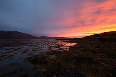 Loch Na Keal (Andy Davis Photography) Tags: sunset cold warm mull lochnakeal shore mountains seaweed canon