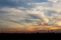 Sunset - Couchet du soleil (benoit871) Tags: bird couchdesoleil dragonfly estaires insect insecte libellule meteren nord oiseau sunrise sunset