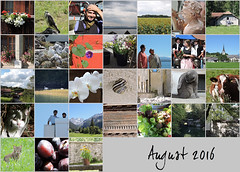 August 2016 mosaic (keepps) Tags: mosaic month bighugelabs