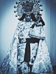 Santsima Virgen de los Desamparados (MariaTere-7) Tags: santsima virgen de los desamparados baslica san pedro apstol caracas venezuela maratere7 explore