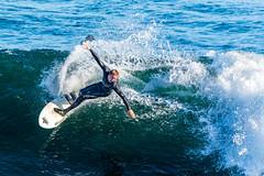 ArchitectGJA-4295.jpg (ArchitectGJA) Tags: lighthousepoint surfing californiababy hurley wetsuit santacruz ripcurl xcel lighthousefield california beach marineanimals coast cliffs waves streetphotography patshaughnessy surfingsteamerlane coastlife steamerlane oneill montereybay
