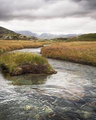Olympus E-M5 + 17 f/1.8 (bHaugland) Tags: norge norway visitnorway hardangervidda nature landscape photography photoshop olympus em5 haukeliseter haukeli edland nasjonalpark