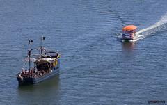 The Chase (Clayton Perry Photoworks) Tags: vancouver bc canada summer southgranville explorebc explorecanada boats pirateship pirateadventures falsecreekferry ferry