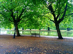 Waiting (azrasyed1) Tags: emotions artistic bedford nature lonely green embankment autumn bench water trees river