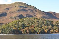 Maiden Moor with Derwent Water to the fore (Steve Barowik) Tags: autumn trees lake english water bells cat nikon colours district derwent cumbria views moor keswick maiden saddleback skiddaw blencathra latrigg d7000 barowik stevebarowik sbofls26
