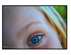 Eye Sea Ewe (MariposaCruz (Coming Back As Time Allows!)) Tags: blue iris macro eye yellow closeup child eyelashes eyebrow blonde childseye pupil blueeye colorcontrast eyemacro eyecloseup blondechild