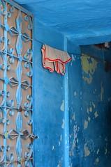 Vest (\(^*^)/) Tags: door blue india hall entrance laundry vest rajasthan jodhpur