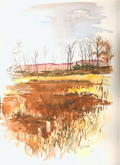 002 (Artist Naturalist-Mike Sherman) Tags: november art rural landscape michigan farm transparent onlocation notphotography midwestern watercolorpainting pleinaire midmichigan danielsmithwatercolors