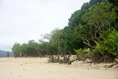 Around Coron (riacale) Tags: beach youth club island philippines mangroves coron palawan cyc