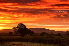 Red Fiery Sky (Natasha Bridges) Tags: morning red sky sunrise dawn shropshire fields wrekin