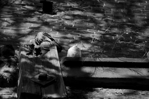Autumn walls ©  Still ePsiLoN
