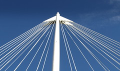 Top of a bridge in London (Tony Worrall) Tags: city uk bridge england white london geometric lines metal modern buildings design triangle tour south capital visit icon tourist made wires tall poles iconic ©2012tonyworrall
