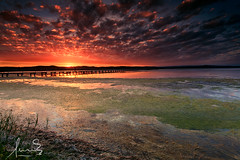 Long Jetty Sunset (sachman75) Tags: sunset seascape water clouds landscape coast pier jetty australia coastal nsw newsouthwales centralcoast canon1740mmf4 longjetty leefilters canon5dmarkii singhrayreversendgrad3stops ndgrad2stops