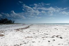 Lonely As A Cloud(s)! (BGDL) Tags: sun sand quiet florida tranquil starmandscircle lidobeach nikkor18105mm13556g nikond7000 bgdl elementsorganizer11