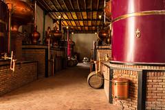 Casa Madero en Parras Coahuila (Emir Blav) Tags: mxico pueblo turismo coahuila vino mgico conocer desconocido tinto parras destileria viero