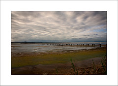 Long Jetty ...  Late Afternoon (Peter & Olga) Tags: nov clouds reeds moss colours jetty lowtide 2012 lateafternoon longjetty d700 focusshoot olgabaldock