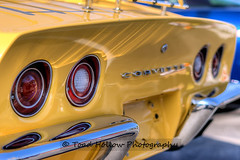 Show 'n Shine - Vette to Victoria - Victoria, BC, Canada (Toad Hollow Photography) Tags: canada chevrolet speed bc fineart rally stock victoria vancouverisland event exotic chevy modified autocross corvette c2 rare supercar hdr carshow vette musclecar c5 c6 c3 c1 z06 c4 fastcar zr1 454 bigblock superstock longweekend smallblock showandshine greatphotographers worldcars flickraward rememberthatmomentlevel1 rememberthatmomentlevel2 victoriacorvetteclub vettetovictoria