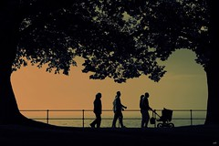 Couples... (_neb) Tags: family autumn trees sunset people baby sun lake tree canon catchycolors walking person mono austria treesilhouette couple walk framed silhouettes couples style bregenz lakeside neb processing persons lakeview buggy catchycolor enjoying stylish lakeofconstance vorarlberg lakescape canonef24105mmf4lisusm colddayinthesun canoneos550d